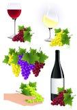 Het elementeninzameling van de wijnstok Stock Foto