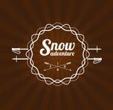Het embleem van de skitoevlucht Stock Foto