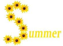 Het embleem van de zomer Stock Afbeeldingen