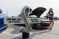 Het embleem van Ford Mustang GT500 Shelby Super Snake Royalty-vrije Stock Afbeeldingen