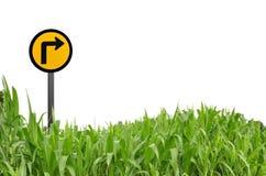 Het embleem van het gras en van het verkeer als witte achtergrond Stock Fotografie