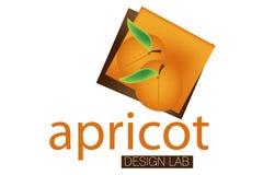 Het Embleem van het Laboratorium van het Ontwerp van de abrikoos Stock Afbeelding