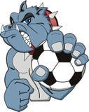 Het embleem van het voetbal Stock Afbeelding