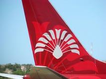Het embleem van Madagascar van de lucht Royalty-vrije Stock Afbeeldingen