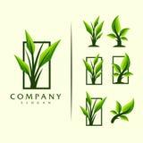Het embleem vectorontwerp van de bladboom royalty-vrije illustratie