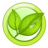Het groene embleem van het ecoblad met waterdalingen Royalty-vrije Stock Foto's