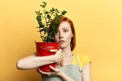 Het emotionele grappige meisje verbergen achter busket met fower royalty-vrije stock foto