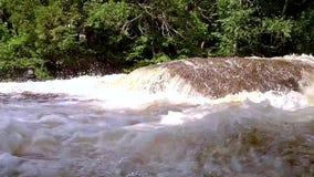 Het enge hand plakken uit de rivier stock footage