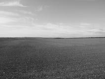 Het Engelse panorama van het land in Salisbury in zwart-wit royalty-vrije stock afbeelding