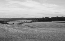 Het Engelse panorama van het land in Salisbury in zwart-wit royalty-vrije stock foto's