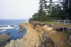Het eroderen van kust van Oregon Stock Afbeeldingen