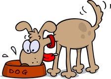 Het eten van de hond Stock Foto