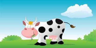 Het eten van de koe Stock Foto