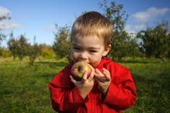 Het eten van een Appel Stock Afbeeldingen