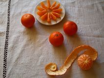 Het eten van mandarins Royalty-vrije Stock Afbeeldingen
