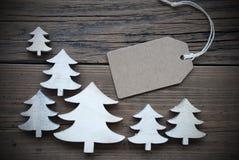 Het etiket en de Kerstbomen kopiëren Ruimtekader Royalty-vrije Stock Fotografie