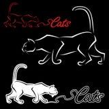 Het etiket van de kat Royalty-vrije Stock Foto's