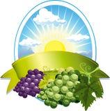 Het etiket van de wijn Royalty-vrije Stock Afbeelding
