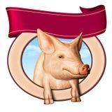 Het etiket van het varken Stock Foto's