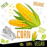 Het etiket verse organische groente van het graanpictogram, van het de kruidenkruid van groentennoten van de de specerijkleur voe royalty-vrije illustratie