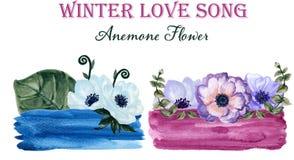 Het etiketanemoon van de waterverfgouache bloemen en bladerenhand getrokken FL Royalty-vrije Stock Fotografie