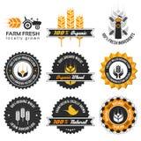 Het etiketreeks van de tarweproductie Stock Foto's
