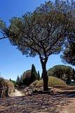 Het Etruscan-necropool van Cerveteri Royalty-vrije Stock Fotografie