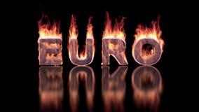 Het euro woord branden in vlammen op de glanzende oppervlakte stock video