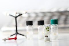 Het experiment van de biotechnologie Royalty-vrije Stock Foto's