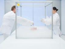 Het experimenteren met vloeibare stikstof in het laboratorium stock afbeelding