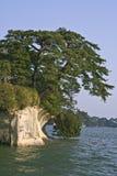 Het extreme landschap van Matsushima Stock Afbeelding