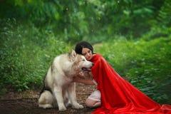 Het fabelachtige beeld, donker-haired donkerbruine aantrekkelijke dame in plotseling witte kleding, lange rode scharlaken mantel  royalty-vrije stock afbeeldingen