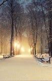 Het fabelachtige park van de de winterstad Stock Foto