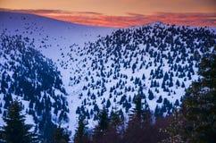 Het fantastische landschap van de avondwinter Dramatische donkere hemel Creatieve collage Karpatisch, de Oekraïne, Europa Stock Foto's