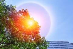 Het fantastische mooie fenomeen van de zonhalo stock fotografie