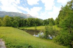 Het fascineren, groot-formaattypes van groene weiden, randen en het Alpiene hout de uitlopers in zomer stock foto's