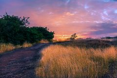 Het fascineren Landschap Stock Foto