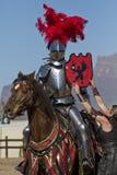 Het Festival Jousting van de Renaissance van Arizona stock foto