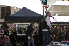 Het Festival van blauw Stock Afbeeldingen