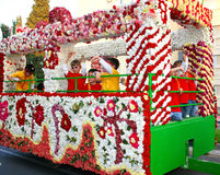 Het festival van bloemen Stock Fotografie