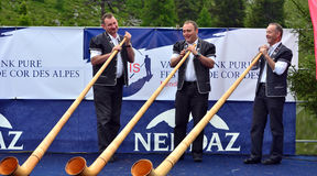 Het Festival van de Alpenhoorn Stock Foto's