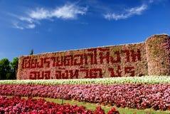 Het Festival van de Chiangraibloem stock foto's