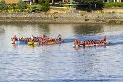 Het festival van de draakboot Stock Foto's