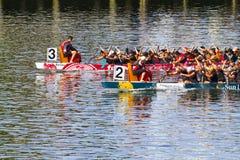 Het festival van de draakboot Royalty-vrije Stock Fotografie