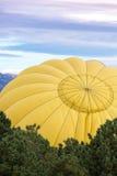 Het Festival van de hete luchtballon Stock Foto's