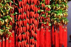 Het Festival van de lente: Het Chinese Nieuwjaar Stock Afbeelding