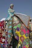 Het Festival van de olifant, Jaipur Royalty-vrije Stock Fotografie