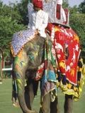 Het Festival van de olifant, Jaipur, India Royalty-vrije Stock Afbeeldingen