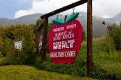 Het Festival van de oogst, het Plukken van de Appel Royalty-vrije Stock Afbeelding