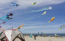 Het festival van de vlieger Stock Fotografie